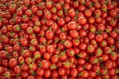 Świezi czerwoni pomidory przy rolnika rynkiem zdrowa żywność organiczne tło obraz stock