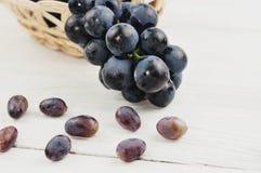 Świezi dojrzali błękitni winogrona nalewali z łozinowego kosza i udział rozrzuceni winogrona na starym drewnianym bielu zaszaluje obrazy stock