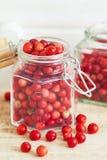 Świezi dojrzali cranberries fotografia royalty free