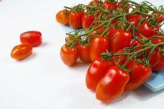 Świezi dojrzali mini marzano pomidory na błękicie wsiadają Zdjęcie Stock