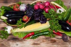 Świezi dojrzali warzywa Zdjęcia Royalty Free