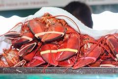 Świezi homary dla sprzedaży przy plenerowym rynkiem Fotografia Royalty Free