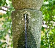 Świezi i jaśni wodni wytryśnięcia od halnego źródła zdjęcia stock