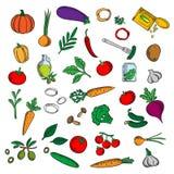 Świezi i kiszeni warzywa z ziele nakreśleniem Zdjęcie Stock