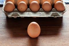 świezi i organicznie jajka od organicznie jajka uprawiają ziemię Obrazy Stock