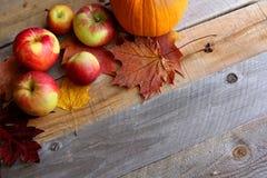 Świezi jabłka, banie i liście klonowi, Graniczą Drewnianego tło obrazy royalty free