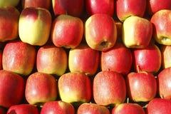 Świezi jabłka na Wprowadzać na rynek kram Obraz Royalty Free