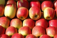 Świezi jabłka na Wprowadzać na rynek kram Zdjęcie Stock