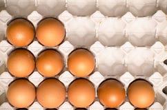 Świezi jajka Obrazy Stock
