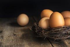 Świezi jajka w ptakach gniazdują w rocznika retro stylowym markotnym naturalnym li Obraz Stock