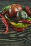 świezi jesień warzywa zdjęcie stock