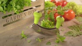Świezi kuchenni ziele i pomidory z mezzaluna nożem zdjęcie wideo