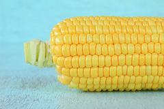 Świezi kukurydzani cobs Fotografia Royalty Free