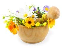 Świezi kwiaty w moździerzu na białym tle Obraz Stock