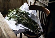 Świezi liście dla kwiatu przygotowania Dekoracyjnego Obrazy Royalty Free