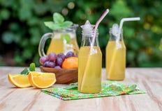 Świezi lukrowi napoje z winogronami i pomarańcze Obraz Stock