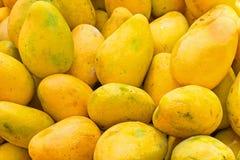 Świezi melonowowie w wprowadzać na rynek kram w India obrazy stock
