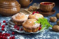 Świezi muffins i cranberry owocowy napój z ciemnym tłem i gałęziastym drzewem Obraz Stock