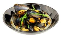 Świezi Mussels W Białego wina kumberlandzie fotografia royalty free