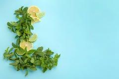Świezi nowi liście i cytrus owoc Fotografia Royalty Free