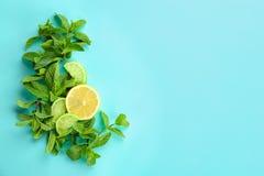Świezi nowi liście i cytrus owoc na koloru tle Zdjęcie Royalty Free