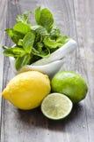 Świezi nowi liście z wapnem i cytryną dla przygotowywać mojito Zdjęcia Stock