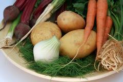 świezi nowi warzywa obraz stock