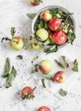 Świezi ogrodowi jabłka na lekkim tle Wieśniaka styl obrazy stock