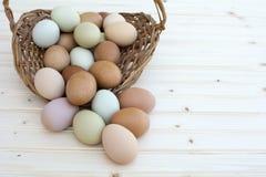 Świezi organicznie chickeneggs przelewają się z kosza na drewnianym backg Fotografia Stock