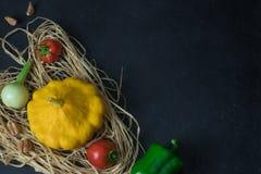 Świezi organicznie sezonowi warzywa - bania, kabaczek, pomidor na czerń betonie wieśniak fotografia stock