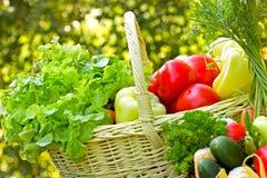 Świezi organicznie warzywa fotografia stock