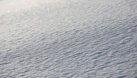 świezi płatek śniegu Zdjęcia Royalty Free