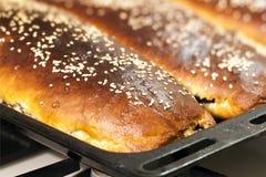 Świezi podparci domowi robić kulebiaki zakrywający z sezamowymi ziarnami na bakin Obraz Stock