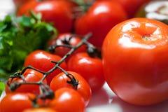 świezi pomidory Zdjęcia Royalty Free