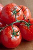 Świezi pomidory opłukujący obraz stock