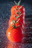 Świezi pomidory opłukujący zdjęcie royalty free