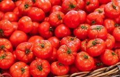 Świezi pomidory w australijczyka rynku zdjęcia stock