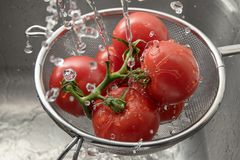 Świezi pomidory w metalu cullender wśród wiele kropel woda, w Zdjęcia Stock