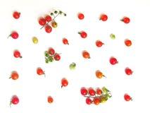 Świezi pomidory w różnorodność kolorach dla tapety Obrazy Royalty Free