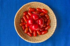 Świezi pomidory z czerwoną papryką w koszu na błękitnym tle Fotografia Royalty Free