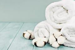 Świezi Przący ręczniki i bawełna Kwitną Przeciw Błękitnemu Backgroun zdjęcie stock