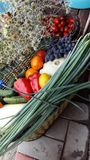 Świezi, różnorodni organicznie warzywa w koszu, Obrazy Royalty Free