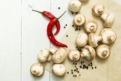 Świezi rolników ceps i czerwonego chili pieprz na bielu stole, żywność organiczna obrazy stock
