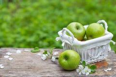 Świezi słodcy soczyści zieleni jabłka z kwiatami drewnianymi Zdjęcia Royalty Free