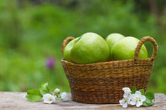 Świezi słodcy soczyści zieleni jabłka z kwiatami drewnianymi Zdjęcie Stock