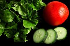 Świezi sałatkowi składniki na czarnym tle Zdjęcia Royalty Free