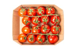 Świezi soczyści czerwoni czereśniowi pomidory w pudełku odizolowywającym na białym tle Odgórny widok Zdjęcie Stock