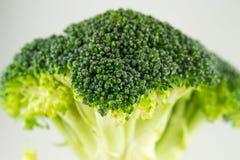 Świezi surowi brokuły odizolowywający na białym tle Fotografia Stock