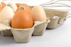 Świezi surowi kurczaków jajka w kartonu pudełku na białym tle, Obraz Stock