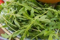 Świezi surowi liście arugula i koper są na talerzu pojęciu ciężar strata i zdrowym łasowaniu, Fotografia Royalty Free